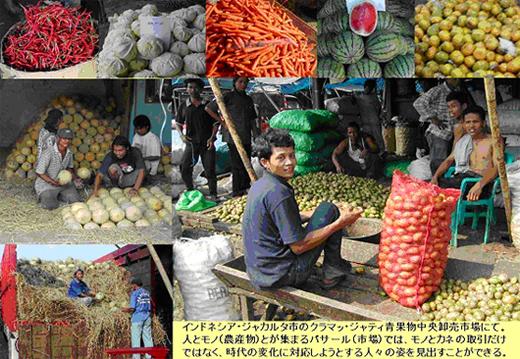 AGRICOCOON(アグリコクーン):国際農業と文化フォーラム